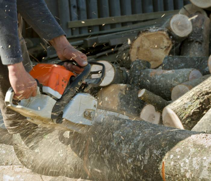 Contractors cutting for fallen tree removal in Lakeland.